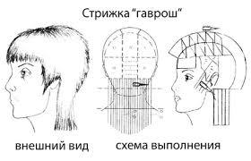 Курсовая работа Современные тенденции базовых стрижек БОЛЬШАЯ  Стрижка гаврош рекомендуется для волос любого типа и длины