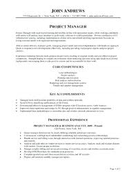 Wireless Project Manager Resume Information Technology Manager Fascinating Construction Resume Examples