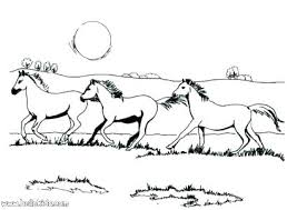 Breyer Coloring Pages Full Screen Download Print Picture Free Breyer