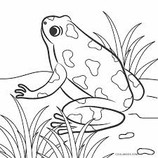 Print this big mouth frog printable coloring page for a cheap and easy activity for kids! Free Printable Frog Coloring Pages For Kids