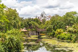 Animal Kingdom Rivers Of Light Dining Package
