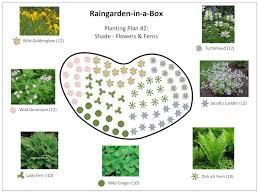 Small Picture Indiana Rain Garden Design With Rain Garden Design Construction
