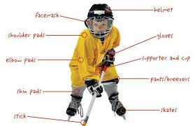Nhl Player Comparison Chart Parents Guide To Buying Equipment