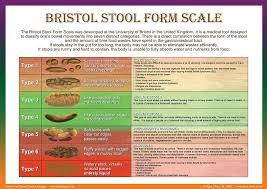 Image Result For Bristol Stool Chart Pdf Bristol Stool