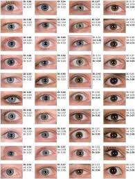 Iris Color Chart Of 40 Different Blue Eye Colors Only The Three Colors In