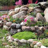 Small Picture Garden Design Ideas