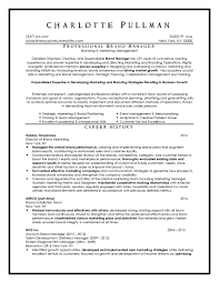 Professional Resume Writing Services USA Resume Writing Service Sample  Customer Service Resume