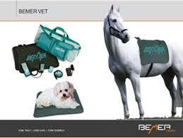 Image result for bemer vet images