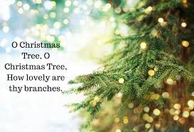 Christmas Tree Quotes Delectable 48 Jolly Christmas Tree Quotes Rudolph's Christmas Trees