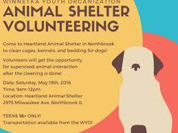 animal shelter volunteer poster. WYO Animal Shelter Volunteering On Volunteer Poster