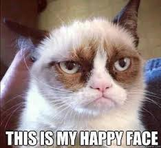grumpy cat good smile. Beautiful Cat It Looks Like Grumpy Cat And Her Owners Have Another Reason To Smile Or  Frown As The Case May Be To Good Smile A