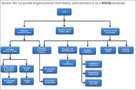 Company Organizational Chart Ceo 66 Genuine Ceo Organizational Chart