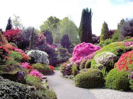 Small Picture Flower Garden Design Pictures Bedroom and Living Room Image