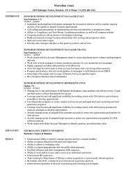 Senior Business Development Resume Samples Velvet Jobs