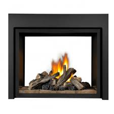 bhd4stgn napoleon bhd4stgn high definition clean face multi view direct vent gas fireplace see thru with glass natural gas direct vent gas fireplaces