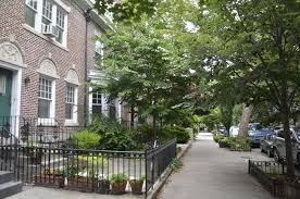 the old homes in prospect lefferts gardens are