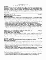 Marketing Digital Marketing Resume
