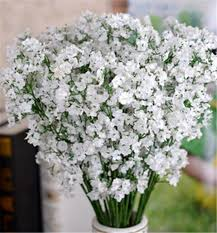 gypsophila baby s breath artificial fake silk flowers plant home wedding decoration from china dhgate