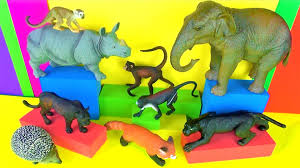 wild s kids toy collection jungle book monkeys panther 3d toys mico macaco funny end you