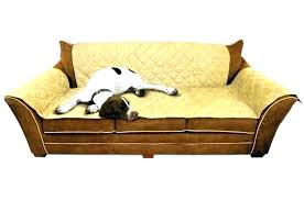 leather sofa protection from cats furniture protectors for dog couch licious proof protect