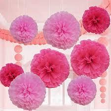 Make Tissue Paper Flower Balls Amazon Com Pink Tissue Paper Flower Pom Pom Balls 12 And 14 Inch