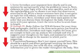 format for an essay how to write a texas format essay with examples wikihow