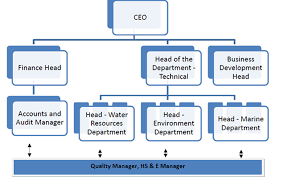 Business Development Manager Organizational Chart Cetus Consulting Solutions Services Pvt Ltd C2s2