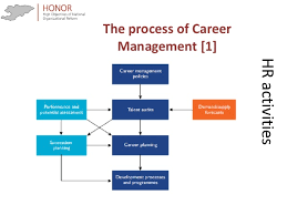 Human Resources Workflow Chart Human Resources Management In Public Administration