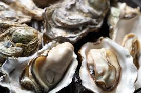 Smoked Oysters on the Half Shell Recipe ...