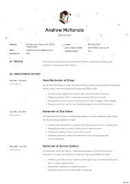 Template Andrew Mckenzie S Bartender Resume Sample 3 Resumes For