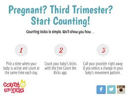 How To Count The Kicks For Twins Twiniversity