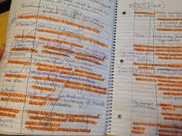 Nasm Study Tips Wrecking Routine