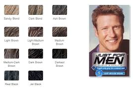 Mens Hair Dye Colour Chart Details About Just For Men Shampoo In Hair Color 1 Application