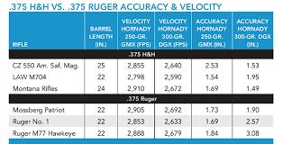 375 Ruger Vs 375 H H