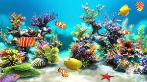 Live Aquarium Wallpapers - Top Free ...