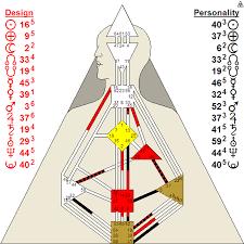 Human Design Chart What Is On A Chart Phoenix Human Design