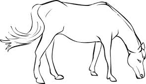Small Picture Free Horse Coloring Pages from Mustangs to Lipizzaners