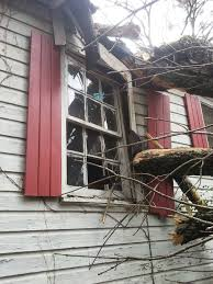 Fundraiser by Diana Raney : Tree Fell on Home- Please Help