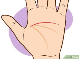 How To Read Palms 9 Steps With Pictures Wikihow