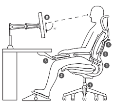 office chair guide. Sit Office Chair Guide C