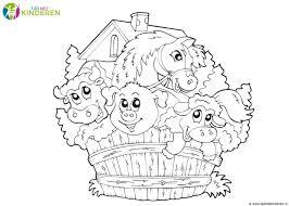 Kinderboerderij Enschede Noord Beste Kleurplaat Dierentuin Dieren20