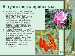 Презентация на тему Всероссийский конкурс рефератов Кругозор  2 Актуальность
