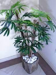 Com um visual marcante, pode decorar espaços mais amplos, como uma recepção ou sala de reunião. 3 Arvore Artificial Verde Folhas Tronco Natural 100 Cm No Elo7 Decora Flores Artificiais D55b5a