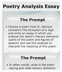 analysis essay template samples examples format  poetry analysis essay sample