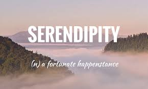 Image result for serendipity