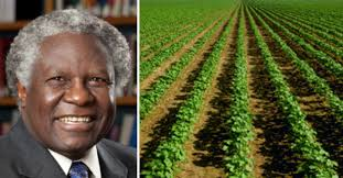 the breakthrough institute revolution in africa a response to breakthrough s essay on precision agriculture