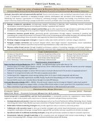 Leadership Resume Executive Career Coaching Resume Writing Services New York 56