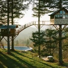 tree house ideas. Tree Houses House Ideas A