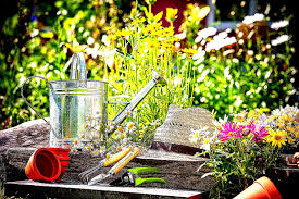 making your own plant nurseries