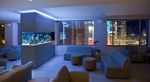 Small Modern Fish Tank Ideas Built In Cabinet